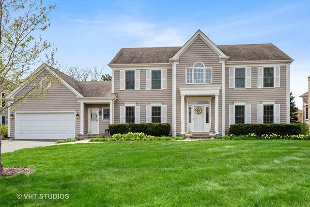 23350 N Providence Drive, Kildeer, IL 60047 (MLS #11062823) :: Helen Oliveri Real Estate