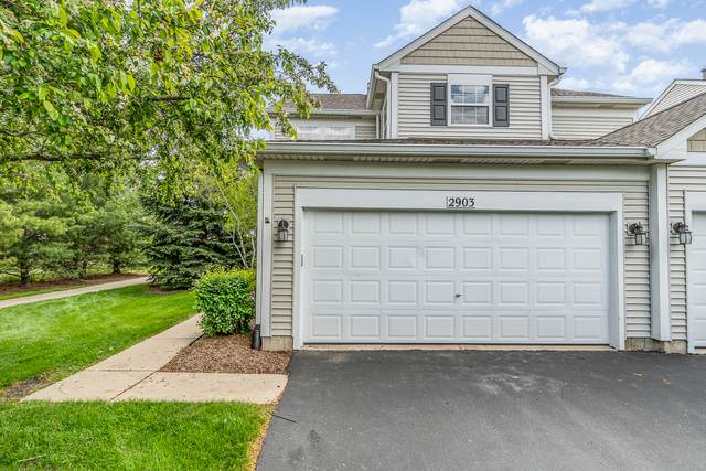 2903 Gypsum Circle, Naperville, IL 60564 (MLS #11063180) :: Littlefield Group