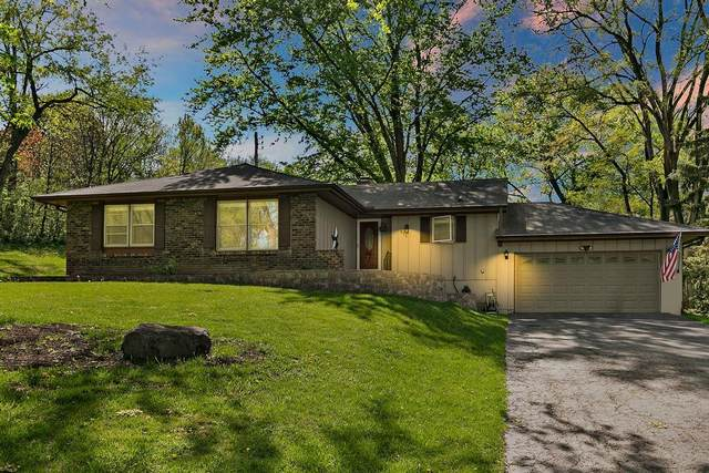 816 Locust Drive, Sleepy Hollow, IL 60118 (MLS #11070916) :: Helen Oliveri Real Estate