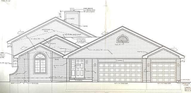 19801 Oakwood Avenue, Lynwood, IL 60411 (MLS #11071799) :: Helen Oliveri Real Estate