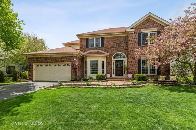 232 Bobolink Drive, Grayslake, IL 60030 (MLS #11075255) :: Helen Oliveri Real Estate