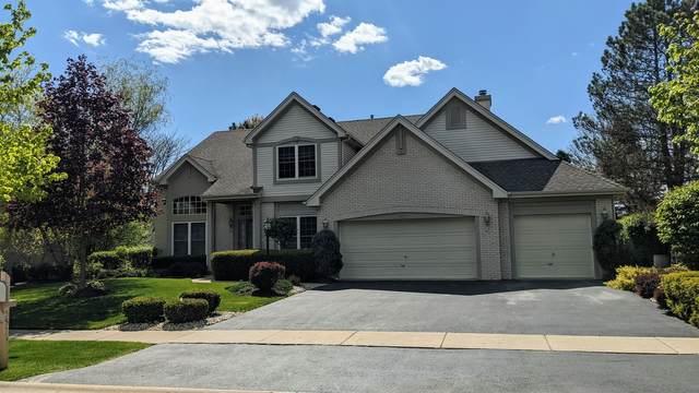 553 Meadowview Drive, Wauconda, IL 60084 (MLS #11075664) :: Helen Oliveri Real Estate
