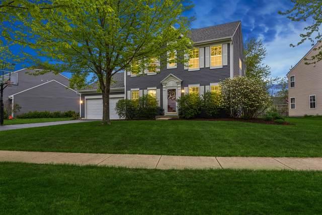 11586 Lancaster Street, Huntley, IL 60142 (MLS #11078253) :: Helen Oliveri Real Estate