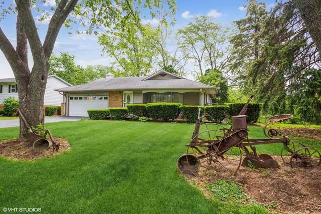 5N373 Andrene Lane, Itasca, IL 60143 (MLS #11078904) :: O'Neil Property Group