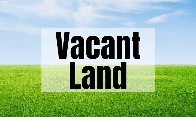 532 S Stewart Avenue, Lombard, IL 60148 (MLS #11081094) :: Ani Real Estate
