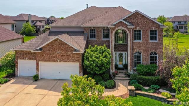 438 Deerfield Drive, Oswego, IL 60543 (MLS #11087528) :: O'Neil Property Group