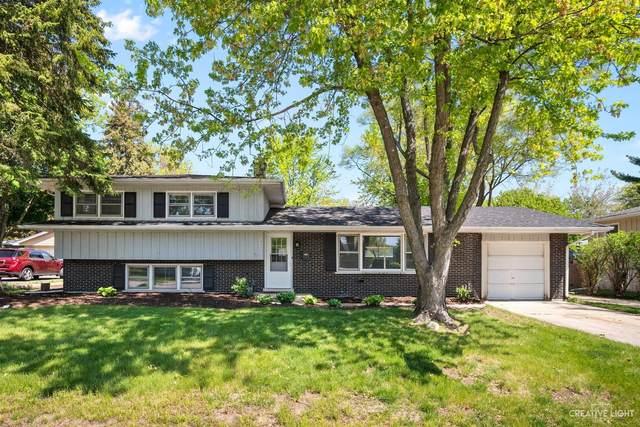 325 Tupelo Avenue, Naperville, IL 60540 (MLS #11088097) :: BN Homes Group