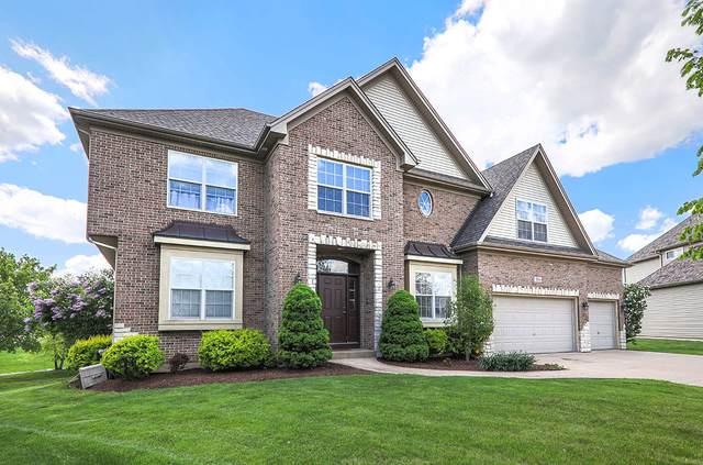 106 Meadows Court, Oswego, IL 60543 (MLS #11088668) :: O'Neil Property Group