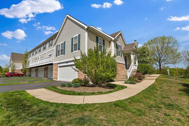 599 N Hidden Prairie Court, Palatine, IL 60067 (MLS #11091411) :: Helen Oliveri Real Estate