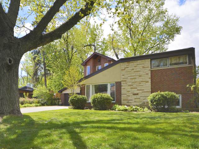 6508 N Kenneth Avenue, Lincolnwood, IL 60712 (MLS #11093394) :: Littlefield Group