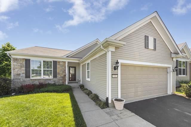 633 Washington Drive, Shorewood, IL 60404 (MLS #11100374) :: BN Homes Group
