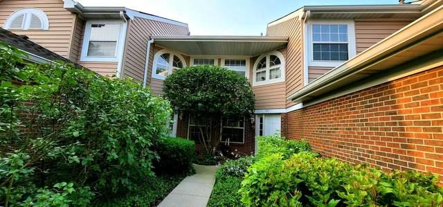 749 W Happfield Drive, Arlington Heights, IL 60004 (MLS #11109152) :: O'Neil Property Group