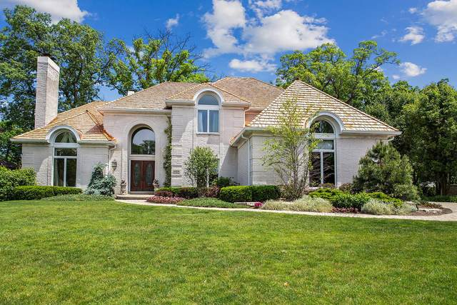 10514 Wildflower Road, Orland Park, IL 60462 (MLS #11109964) :: Schoon Family Group
