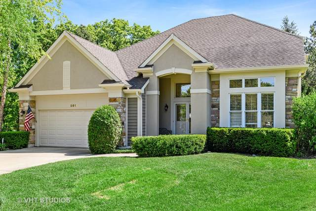 591 Eagle Court, Riverwoods, IL 60015 (MLS #11109987) :: BN Homes Group
