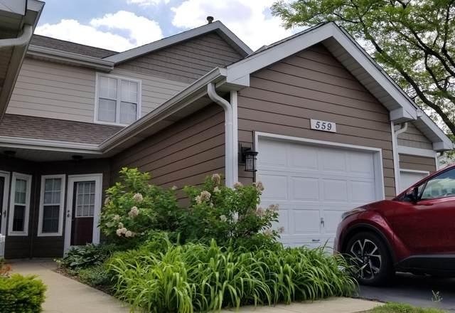 559 Woodhaven Drive, Mundelein, IL 60060 (MLS #11113156) :: Charles Rutenberg Realty