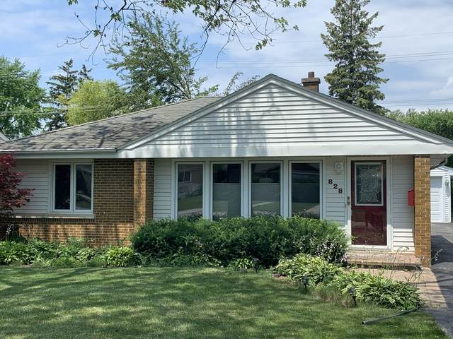 828 Mckinley Avenue, Mundelein, IL 60060 (MLS #11114153) :: The Wexler Group at Keller Williams Preferred Realty