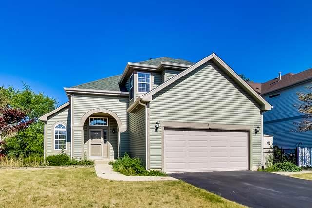 373 Wagonwood Road, Round Lake, IL 60073 (MLS #11117957) :: Ryan Dallas Real Estate