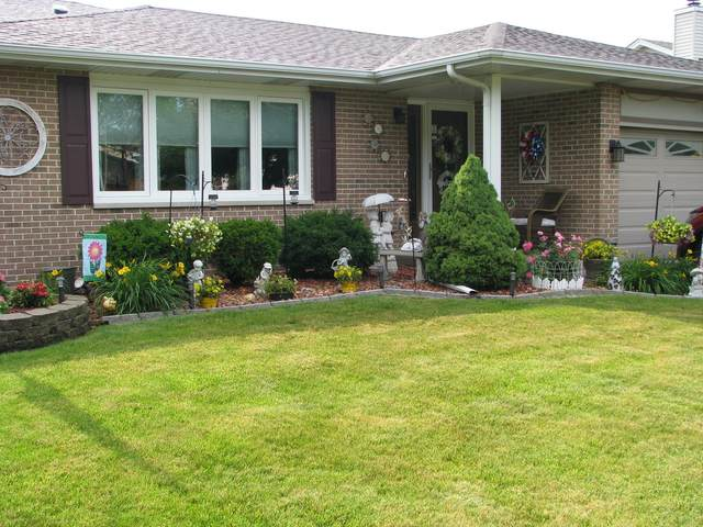 249 Hickory Oaks Drive, Bolingbrook, IL 60490 (MLS #11121326) :: The Dena Furlow Team - Keller Williams Realty