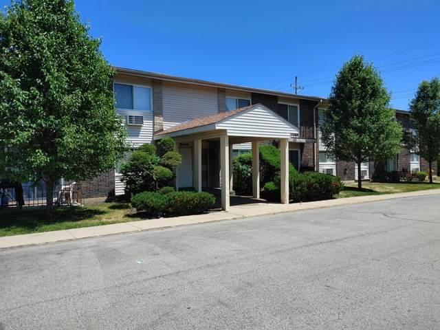 8884 Steven Drive 205E, Des Plaines, IL 60016 (MLS #11121892) :: Touchstone Group