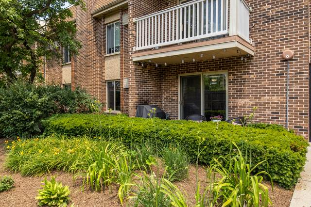 906 W Alleghany Drive 1C, Arlington Heights, IL 60005 (MLS #11123082) :: Touchstone Group
