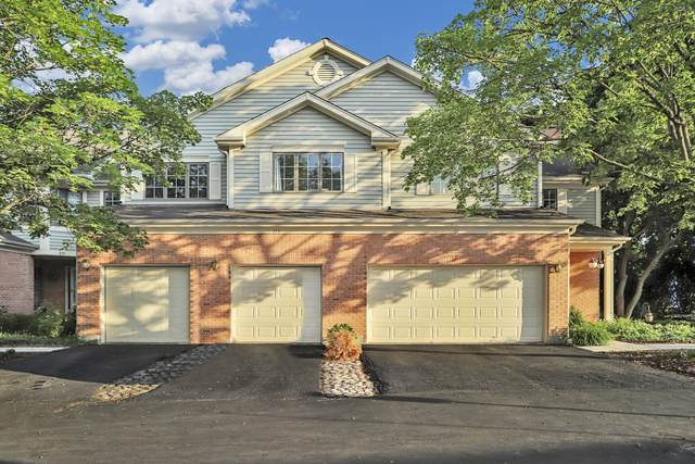 215 College Drive, Mount Prospect, IL 60056 (MLS #11123201) :: Touchstone Group