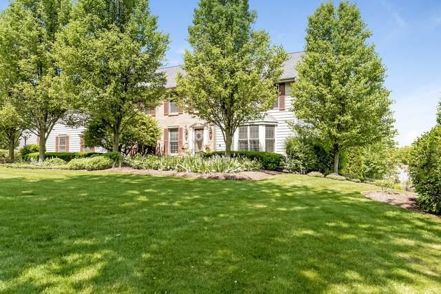 1230 Spring Hill Drive, Algonquin, IL 60102 (MLS #11124898) :: Jacqui Miller Homes