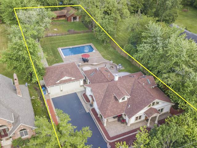 9943 S 88th Avenue, Palos Hills, IL 60465 (MLS #11125987) :: The Wexler Group at Keller Williams Preferred Realty