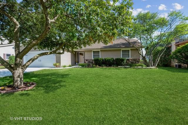 725 N Vista Drive N, Algonquin, IL 60102 (MLS #11127713) :: Jacqui Miller Homes