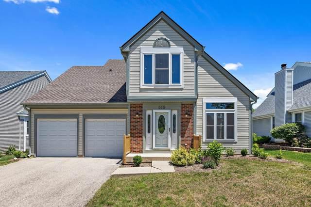619 Newberry Drive, Elk Grove Village, IL 60007 (MLS #11128265) :: Suburban Life Realty