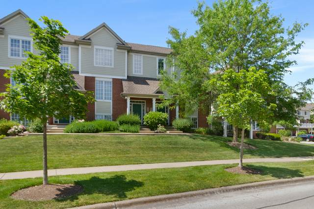 10647 Gabrielle Lane, Orland Park, IL 60462 (MLS #11128916) :: BN Homes Group