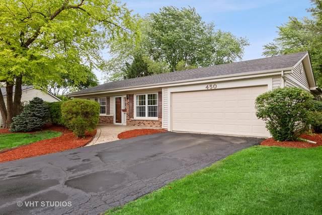 450 Hobble Bush Drive, Lake Zurich, IL 60047 (MLS #11134433) :: John Lyons Real Estate