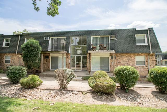 10160 S 84th Terrace #103, Palos Hills, IL 60465 (MLS #11147798) :: The Wexler Group at Keller Williams Preferred Realty