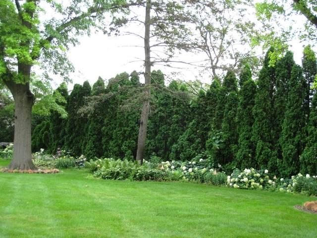 19 Devonshire Drive, Oak Brook, IL 60523 (MLS #11149965) :: Angela Walker Homes Real Estate Group