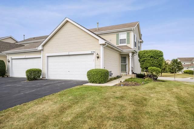 530 Prairie View Drive, Minooka, IL 60447 (MLS #11153810) :: Littlefield Group
