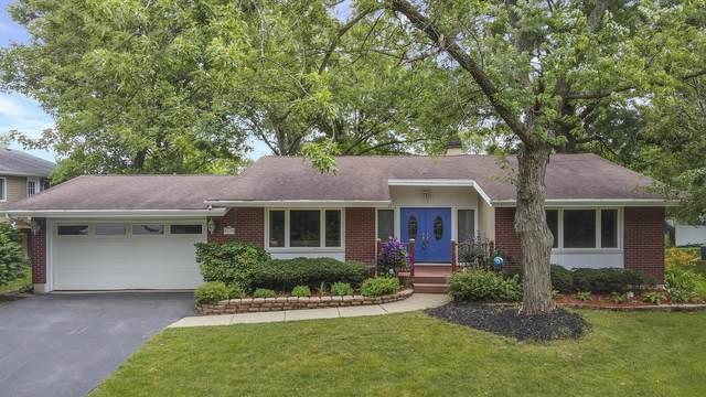 2517 59th Street, Woodridge, IL 60517 (MLS #11158539) :: Jacqui Miller Homes