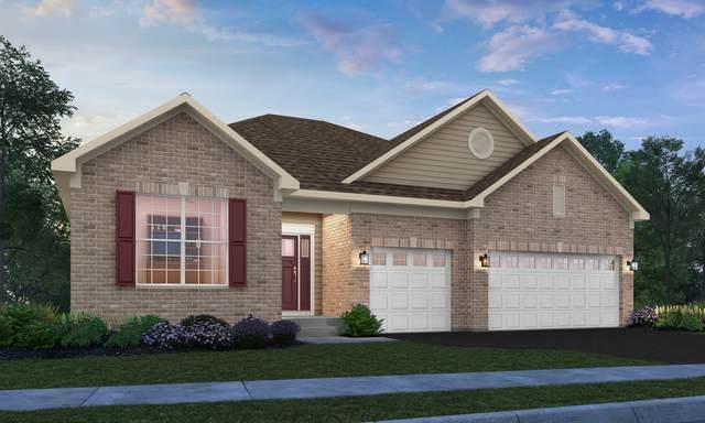 16017 S Longcommon Lane, Plainfield, IL 60586 (MLS #11160257) :: O'Neil Property Group