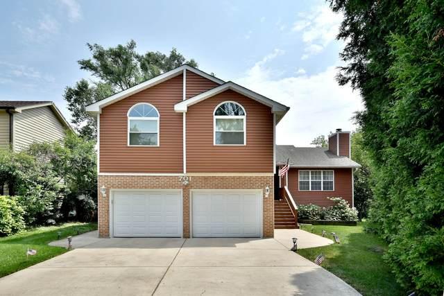 701 N Coolidge Avenue, Palatine, IL 60067 (MLS #11164336) :: O'Neil Property Group