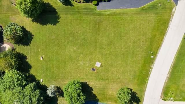 6150 Stansbury Lane, Lakewood, IL 60014 (MLS #11169207) :: Littlefield Group
