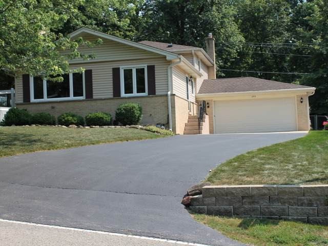 253 Indian Trail, Lake In The Hills, IL 60156 (MLS #11169255) :: The Spaniak Team