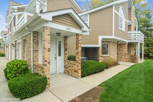 1253 Ranch View Court, Buffalo Grove, IL 60089 (MLS #11170731) :: Littlefield Group