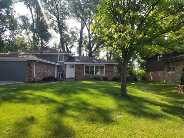 10143 S Eleanor Avenue, Palos Hills, IL 60465 (MLS #11173243) :: Schoon Family Group