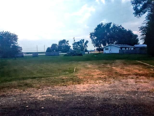 7 Thomas Court, Wapella, IL 61777 (MLS #11174686) :: Suburban Life Realty