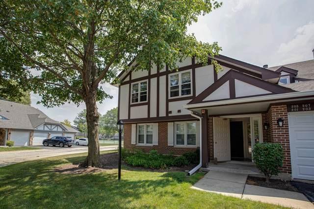 205 Coventry Circle #183, Vernon Hills, IL 60061 (MLS #11176060) :: The Dena Furlow Team - Keller Williams Realty