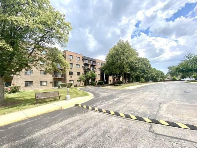239 N Mill Road #217, Addison, IL 60101 (MLS #11176616) :: The Dena Furlow Team - Keller Williams Realty