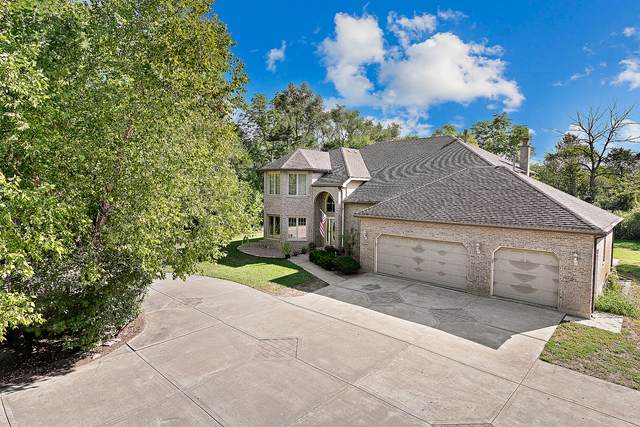 14007 S Elm Street, Homer Glen, IL 60491 (MLS #11177543) :: The Wexler Group at Keller Williams Preferred Realty