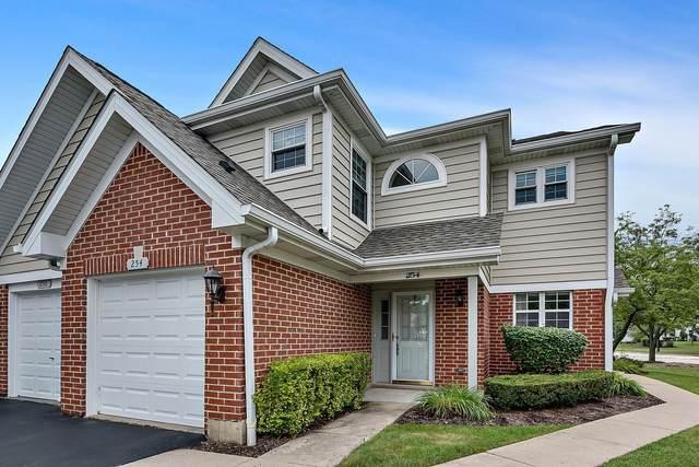 254 Sheffield Drive #19018, Schaumburg, IL 60194 (MLS #11177833) :: John Lyons Real Estate