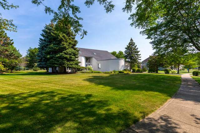 4402 Palmer Circle, Naperville, IL 60564 (MLS #11186542) :: The Wexler Group at Keller Williams Preferred Realty