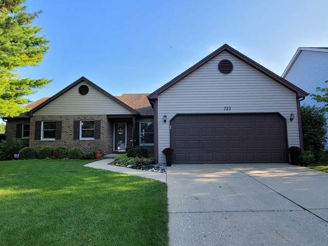 723 Canyon Lane, Elgin, IL 60123 (MLS #11191776) :: John Lyons Real Estate