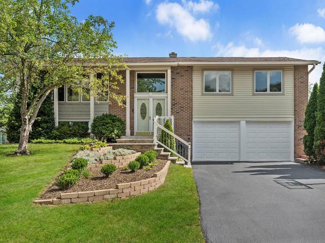708 Westchester Lane, Bolingbrook, IL 60440 (MLS #11203056) :: John Lyons Real Estate