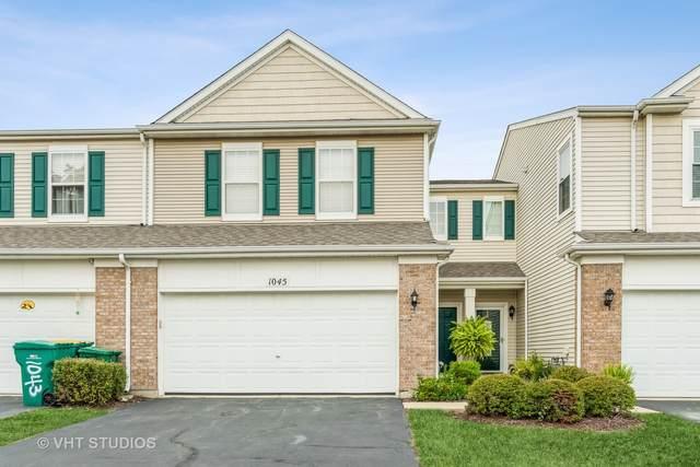 1045 Heron Circle, Joliet, IL 60431 (MLS #11212107) :: O'Neil Property Group